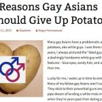 Gay Asians and Potatoes: 5 Responses to The Angry Homosexual