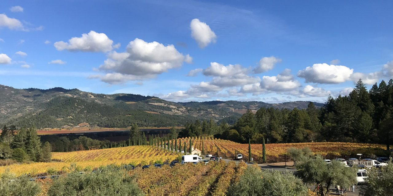 Our Favorite Napa Valley Points of Interest