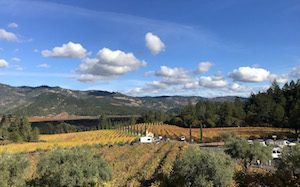 napa valley points of interest