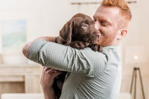 How to Potty Train a Puppy in an Apartment